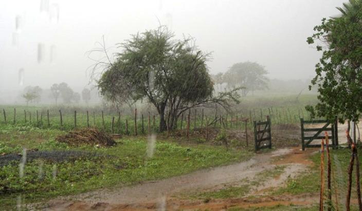 Resultado de imagem para chuva em umarizal/N