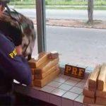 PRF prende mulher com 12,5 kg de maconha em Macaíba