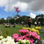 Dia das Mães: mais de cinco mil pessoas são esperadas nos cemitérios do Grupo Vila