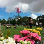 Dia dos Pais contará com programação religiosa em cemitérios potiguares